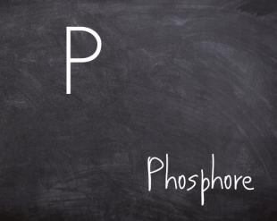 Le phosphore
