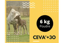 CEVA+3o 6 Kg