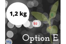 Option E 1.2 kg